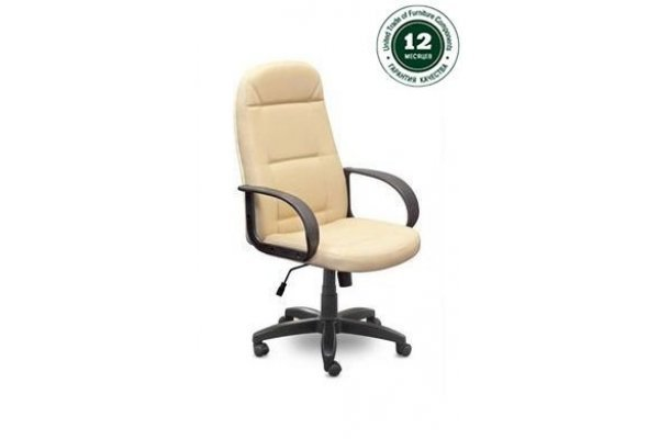 Кресло для руководителя Идра Бюджет В пластик